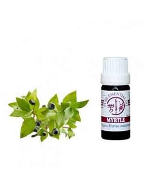myrtle essential oil